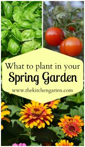 what to plant in spring garden