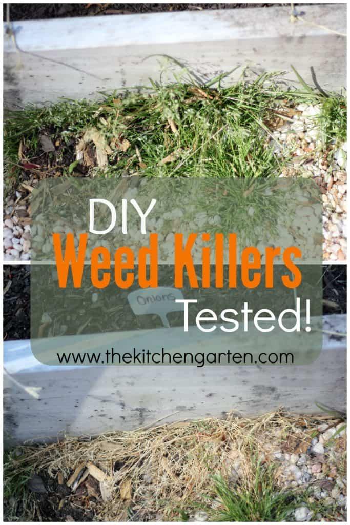 DIY Weed Killers