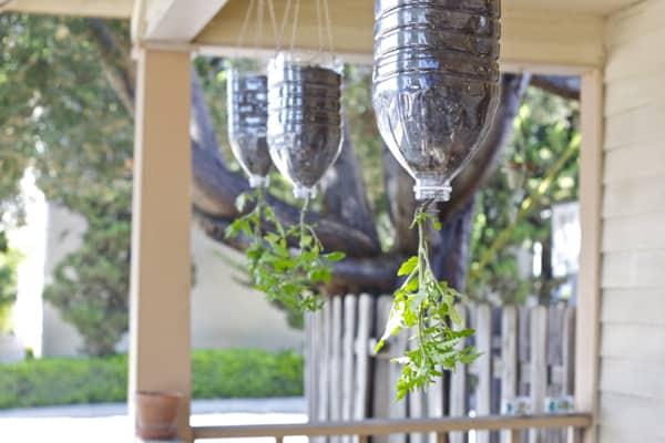 water jug planters