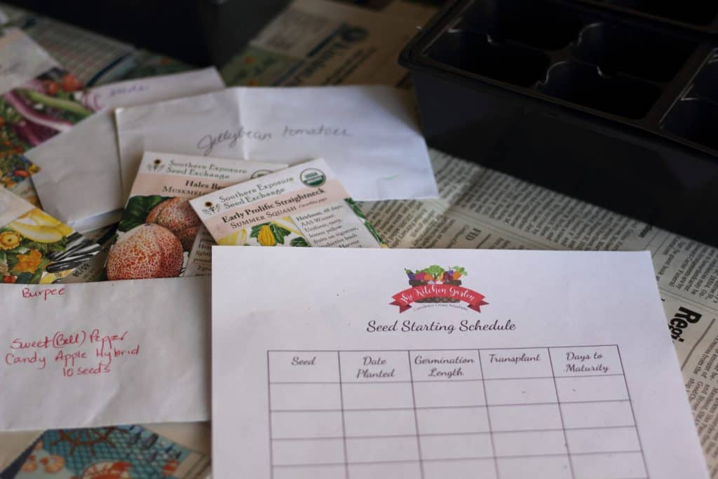 seed packets and inventory on table