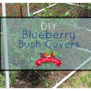 DIY Blueberry Bush Covers