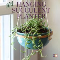 blue ceramic bowl in embroidery hoop as a hanging succulent planter