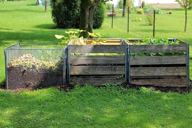 three wooden bin compost system on green lawn