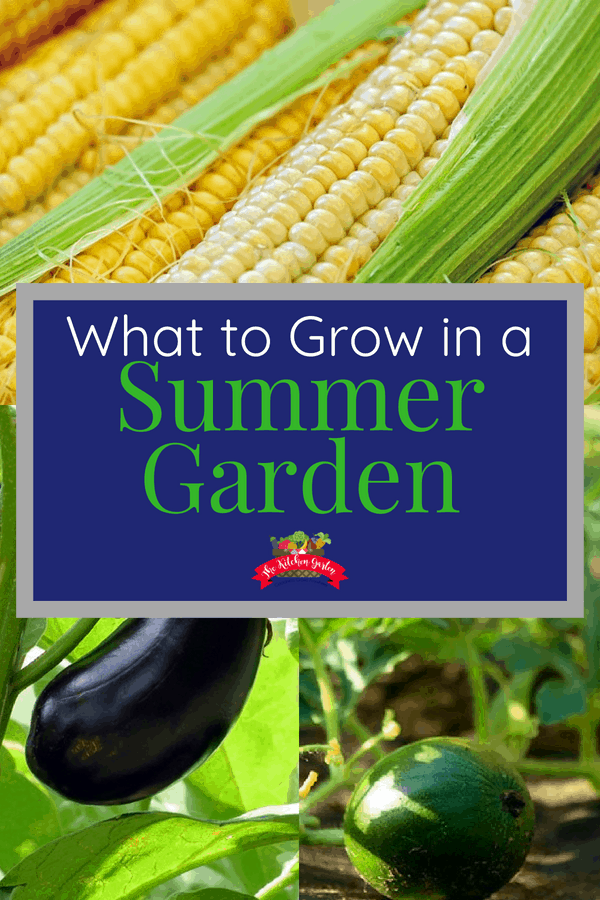 what to grow in a summer garden