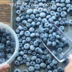 frozen blueberries on a metal sheet pan