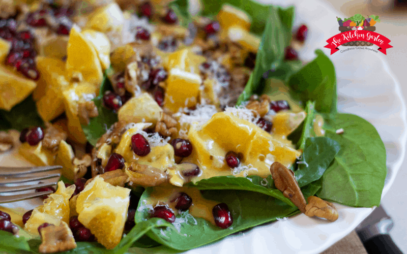pomegranate, oranges, and pecans on a bed of spinach greens