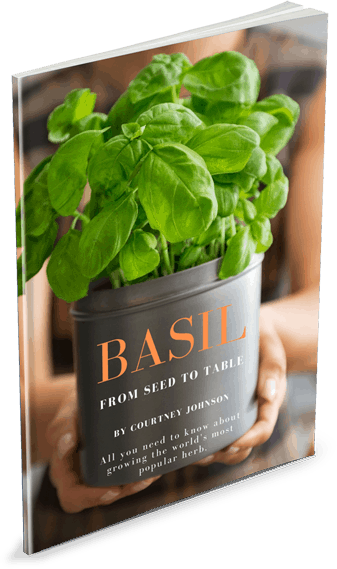 Basil: From Seed to Table Cover