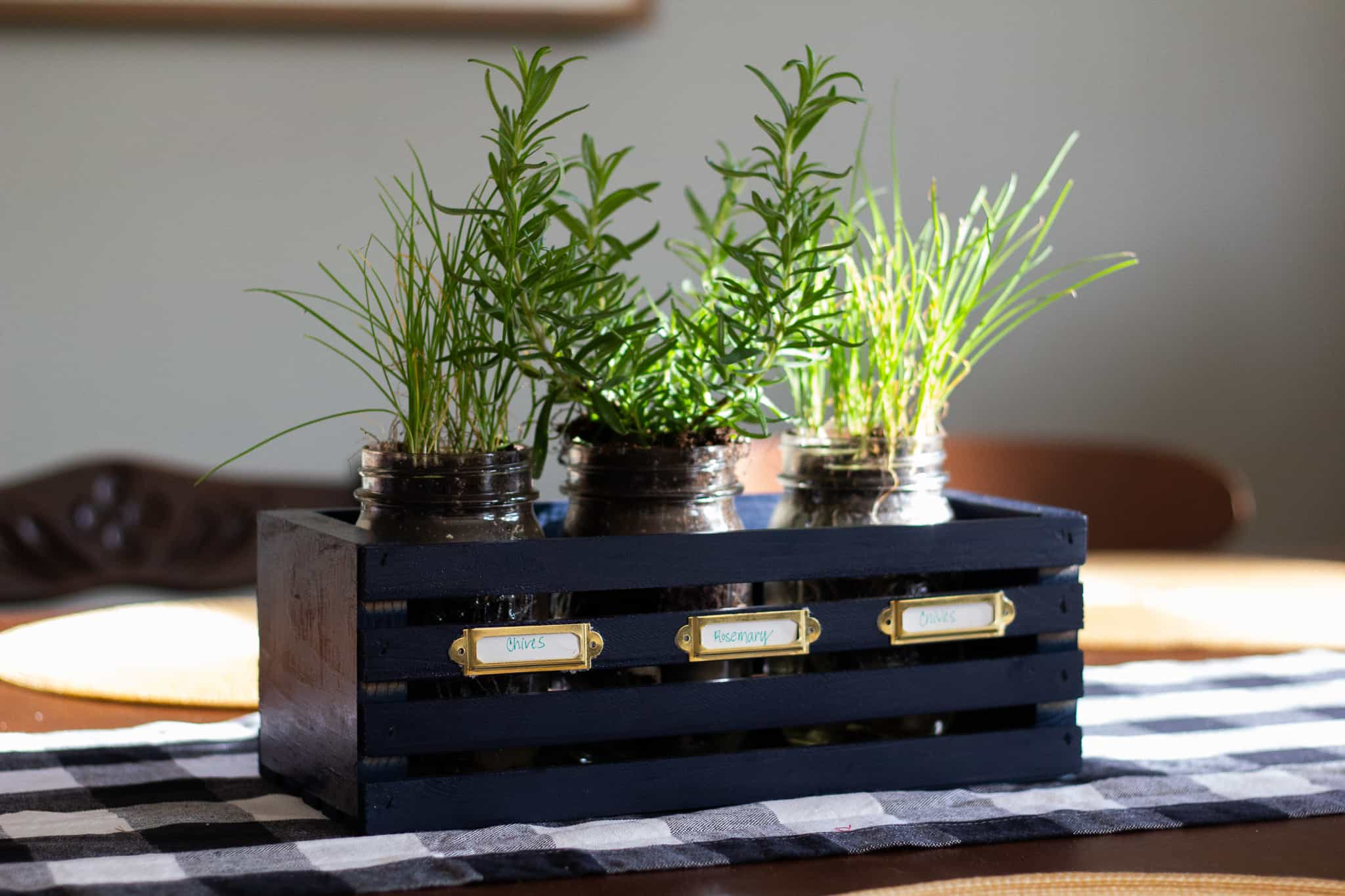 Mason jar herb planter in navy blue crate on dining table with buffalo check runner
