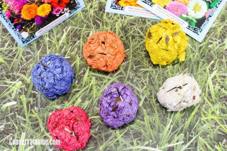six colored seed bombs on grass