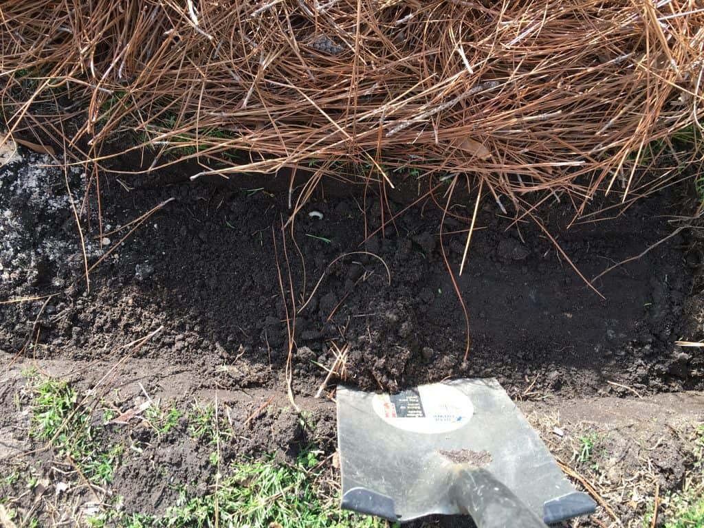 shovel digging to create brick edging for garden