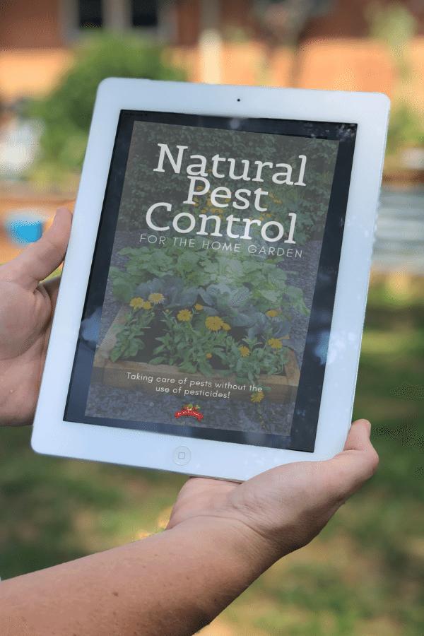 natural pest control for the home garden book