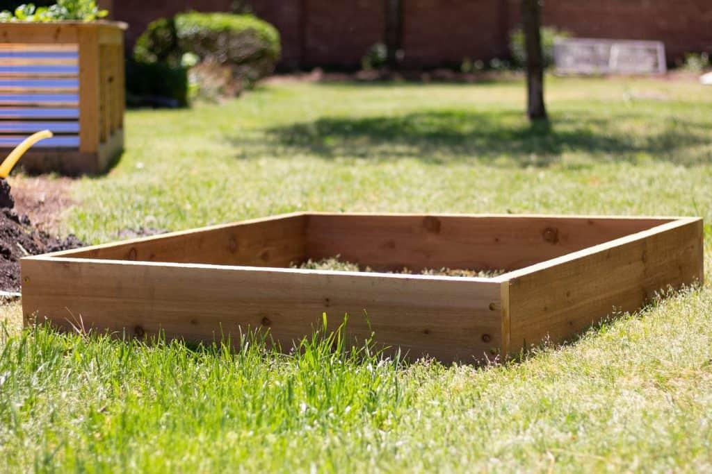 cedar raised bed garden in green grass