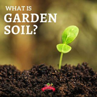 Garden Soil in Your Backyard