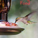 DIY hummingbird food