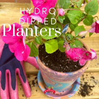 DIY Hydro Dipped Planters