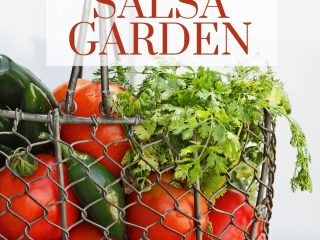 tomatoes, jalapenos, and cilantro in a wire basket