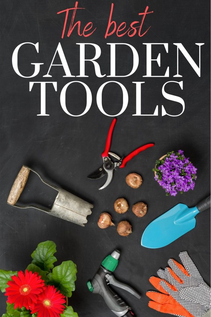 Gardening tools and bulbs on a black background