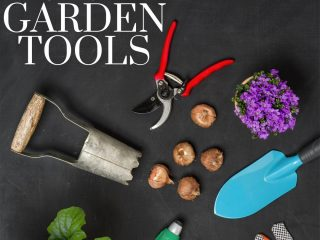 garden tools on a black background
