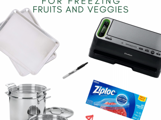 best products for freezing fruits and veggies